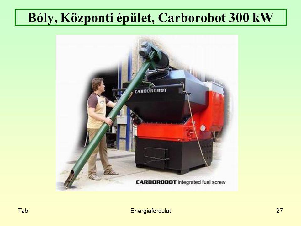 TabEnergiafordulat27 Bóly, Központi épület, Carborobot 300 kW