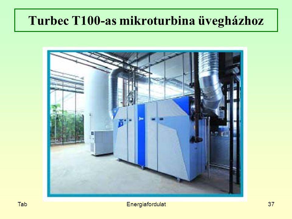 TabEnergiafordulat37 Turbec T100-as mikroturbina üvegházhoz