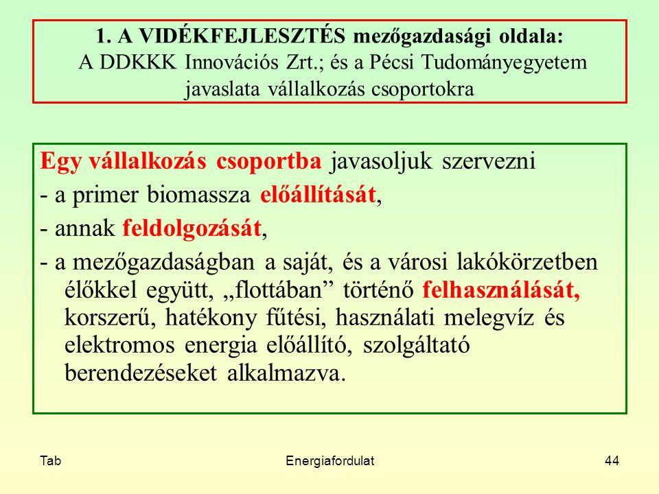 TabEnergiafordulat44 1. A VIDÉKFEJLESZTÉS mezőgazdasági oldala: A DDKKK Innovációs Zrt.; és a Pécsi Tudományegyetem javaslata vállalkozás csoportokra