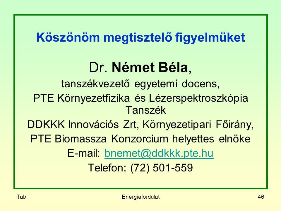 TabEnergiafordulat46 Köszönöm megtisztelő figyelmüket Dr. Német Béla, tanszékvezető egyetemi docens, PTE Környezetfizika és Lézerspektroszkópia Tanszé