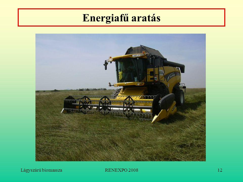 Lágyszárú biomasszaRENEXPO 200812 Energiafű aratás