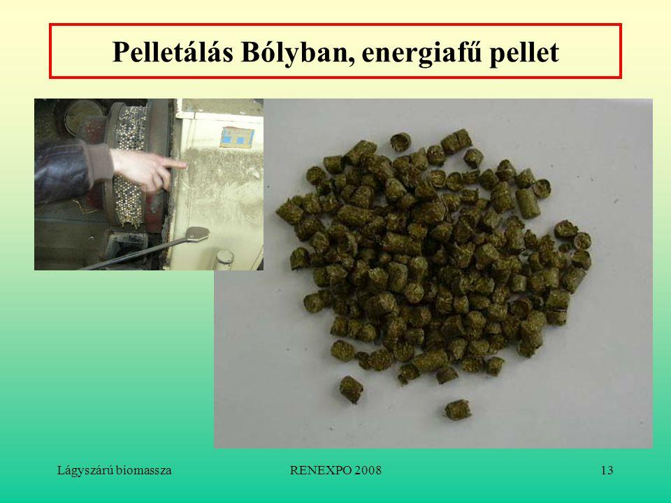 Lágyszárú biomasszaRENEXPO 200813 Pelletálás Bólyban, energiafű pellet