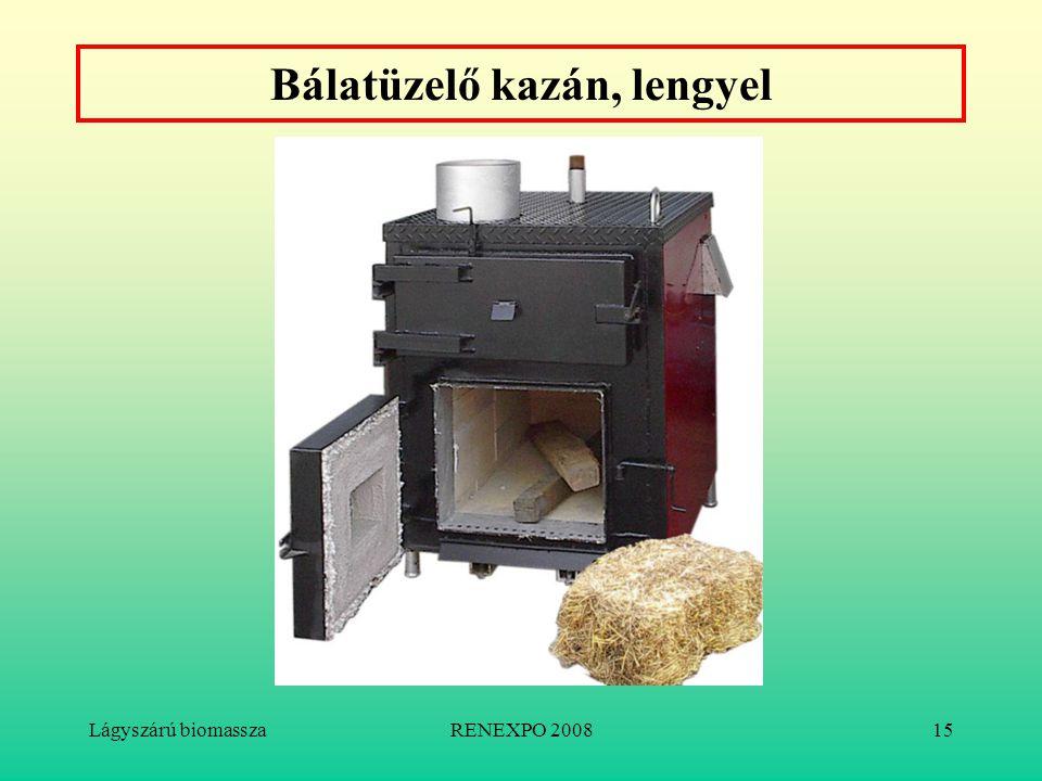 Lágyszárú biomasszaRENEXPO 200815 Bálatüzelő kazán, lengyel