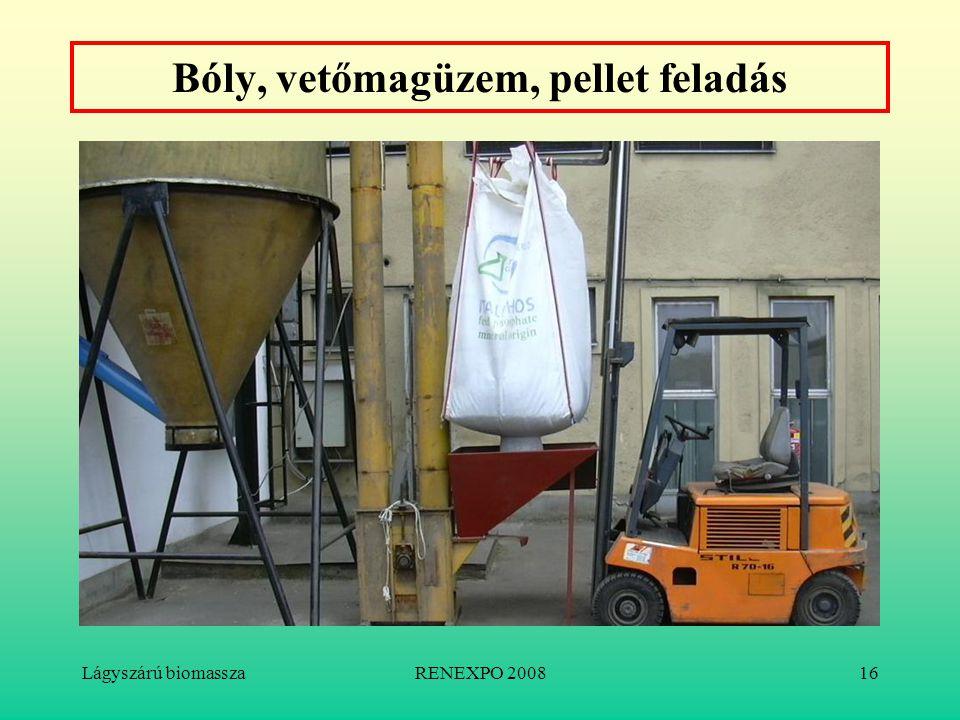 Lágyszárú biomasszaRENEXPO 200816 Bóly, vetőmagüzem, pellet feladás