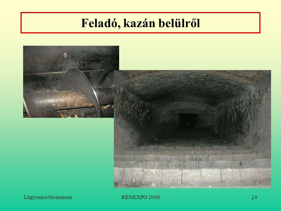 Lágyszárú biomasszaRENEXPO 200824 Feladó, kazán belülről