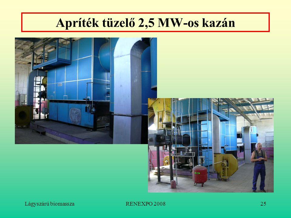 Lágyszárú biomasszaRENEXPO 200825 Apríték tüzelő 2,5 MW-os kazán