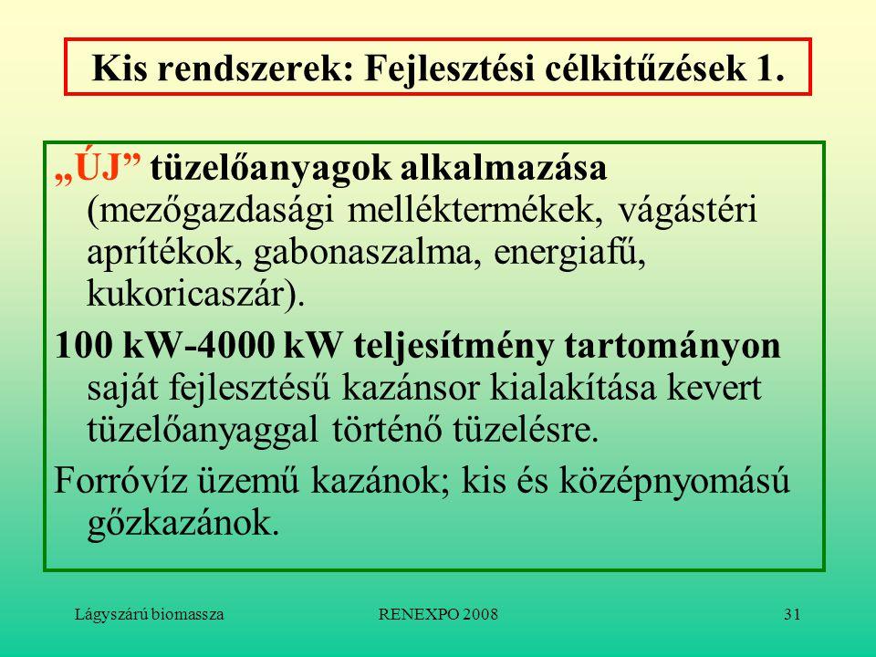 """Lágyszárú biomasszaRENEXPO 200831 Kis rendszerek: Fejlesztési célkitűzések 1. """"ÚJ"""" tüzelőanyagok alkalmazása (mezőgazdasági melléktermékek, vágástéri"""