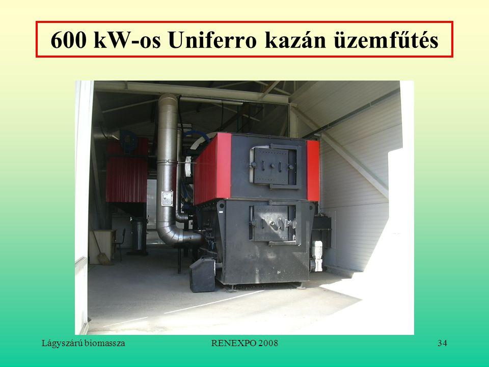 Lágyszárú biomasszaRENEXPO 200834 600 kW-os Uniferro kazán üzemfűtés