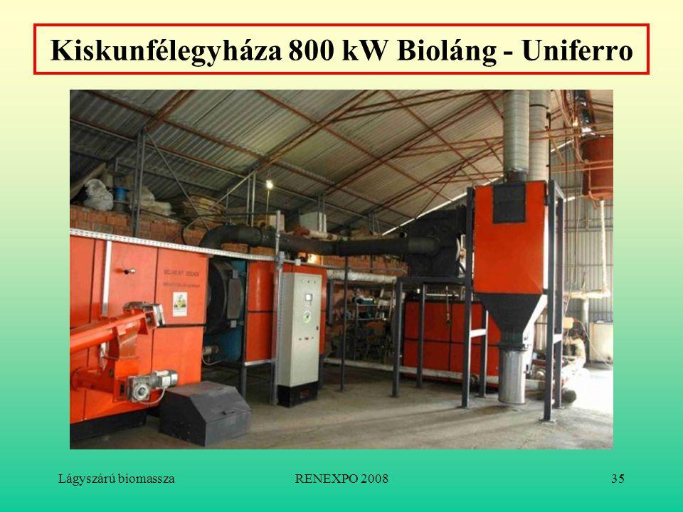 Lágyszárú biomasszaRENEXPO 200835 Kiskunfélegyháza 800 kW Bioláng - Uniferro