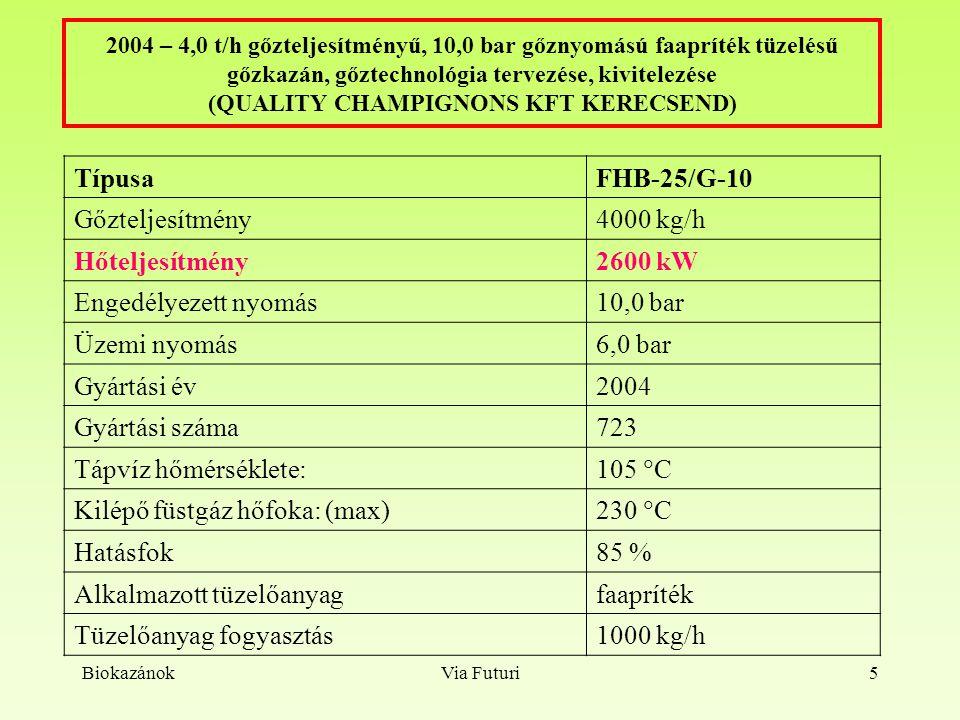 BiokazánokVia Futuri6 2005 - 2,0 t/h gőzteljesítményű, 20,0 bar gőznyomású faapríték tüzelésű gőzkazán, gőztechnológia tervezése, kivitelezése (Vértesi Erdészeti és Faipari Rt, Sikárosi Fűrészüzem, Pusztavám) TípusaFHB-14/G-10 Gőzteljesítmény2000 kg/h Hőteljesítmény1400 kW Besorolási nyomás: (PS)10,0 bar Besorolási űrtartalom: (V)2850 l Próbanyomás: (PT)18,5 bar Üzemi nyomás6,0 bar Tápvíz hőmérséklete: 105  C Kilépő füstgáz hőfoka: (max.) 230  C Hatásfok85 % Alkalmazott tüzelőanyagfaapríték Tüzelőanyag fogyasztás500 kg/h