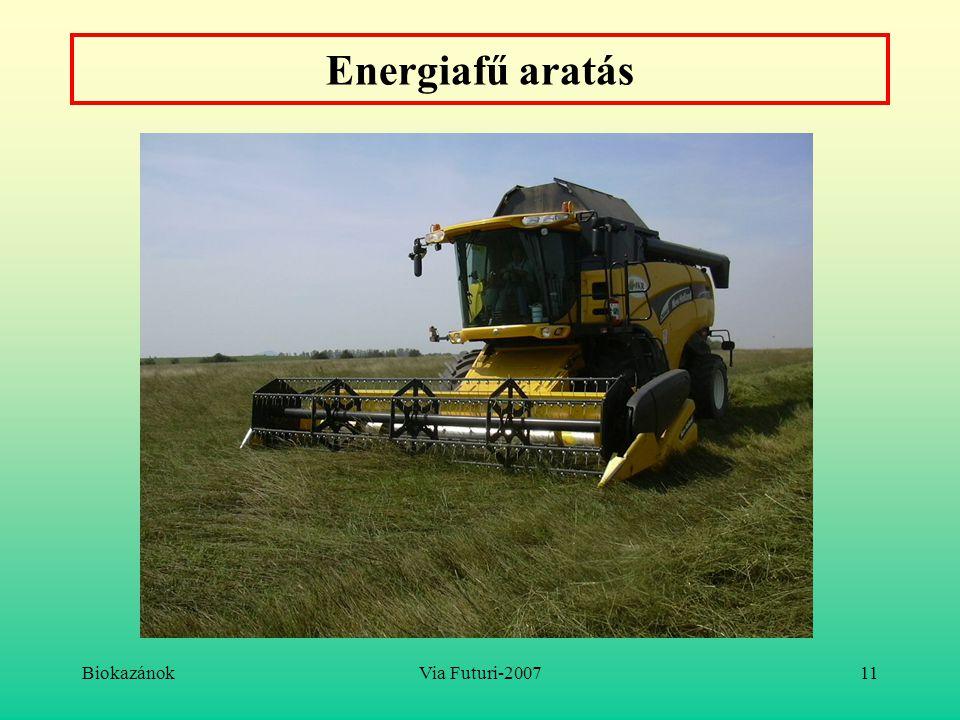 BiokazánokVia Futuri-200711 Energiafű aratás