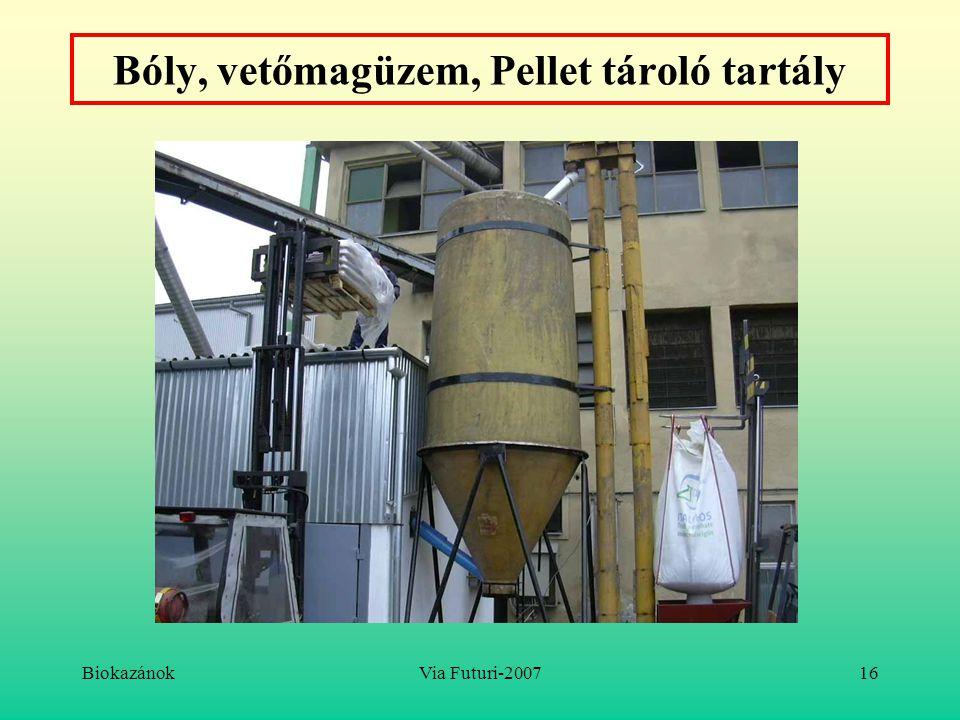 BiokazánokVia Futuri-200716 Bóly, vetőmagüzem, Pellet tároló tartály