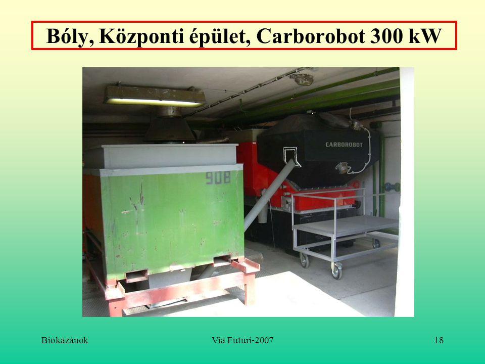 BiokazánokVia Futuri-200718 Bóly, Központi épület, Carborobot 300 kW