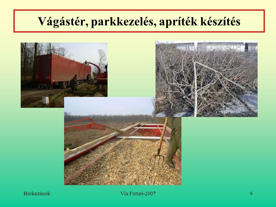 BiokazánokVia Futuri-200710 Aprítékok: fa, energiafű, nyesedék, kukoricaszár