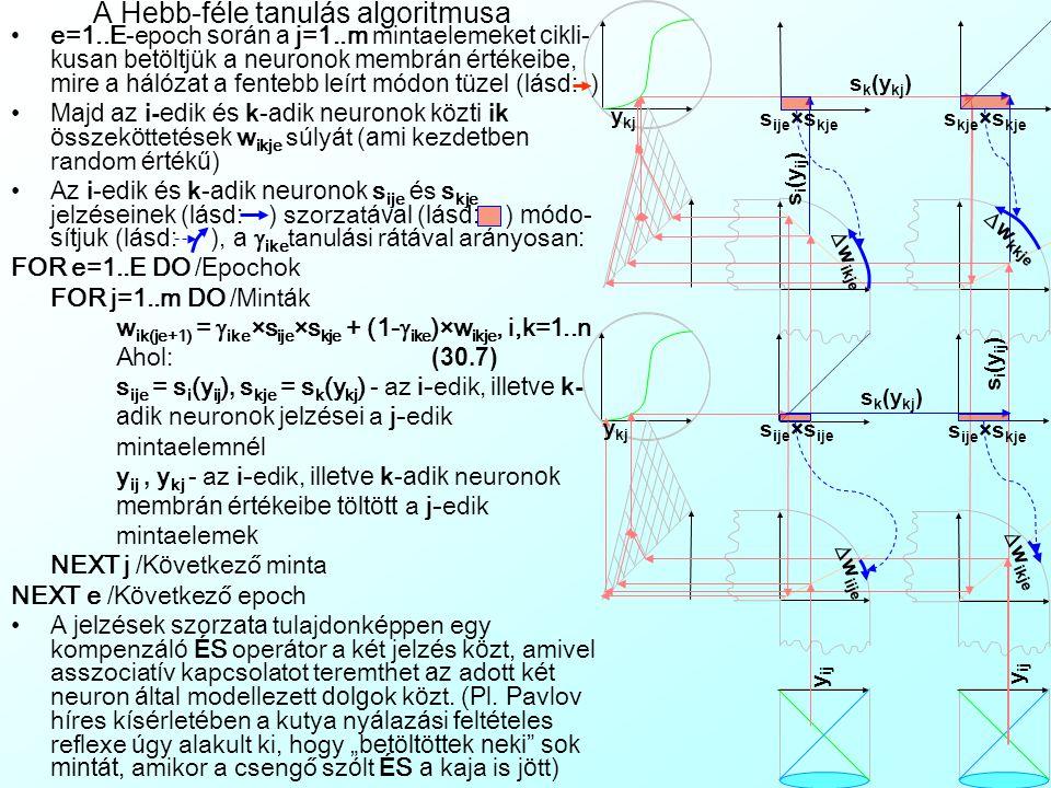 A BAM aktivációja A h á l ó zat x it membr á n é rt é kei a v é gtelenbe konverg á lnak A h á l ó zat x it membr á n é rt é kei egy adott x* vektor fele konverg á lnak, é s e k ö r ü l Ljapunov-stabil á llapot (Ljapunov Stability) alakul ki, vagyis megadhat ó x* olyan  sugar ú k ö rnyezete, amiből a rendszer m á r nem l é p ki kűlső beavatkoz á s n é lk ü l t=1..T időperi ó duson kereszt ü l.
