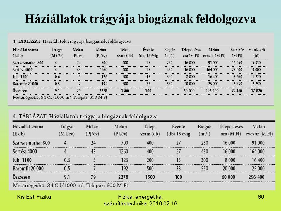 Kis Esti FizikaFizika, energetika, számítástechnika 2010.02.16 60 Háziállatok trágyája biogáznak feldolgozva