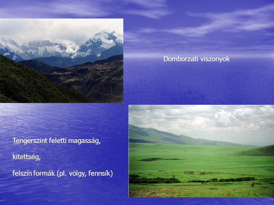 Domborzati viszonyok Tengerszint feletti magasság, kitettség, felszín formák (pl. völgy, fennsík)