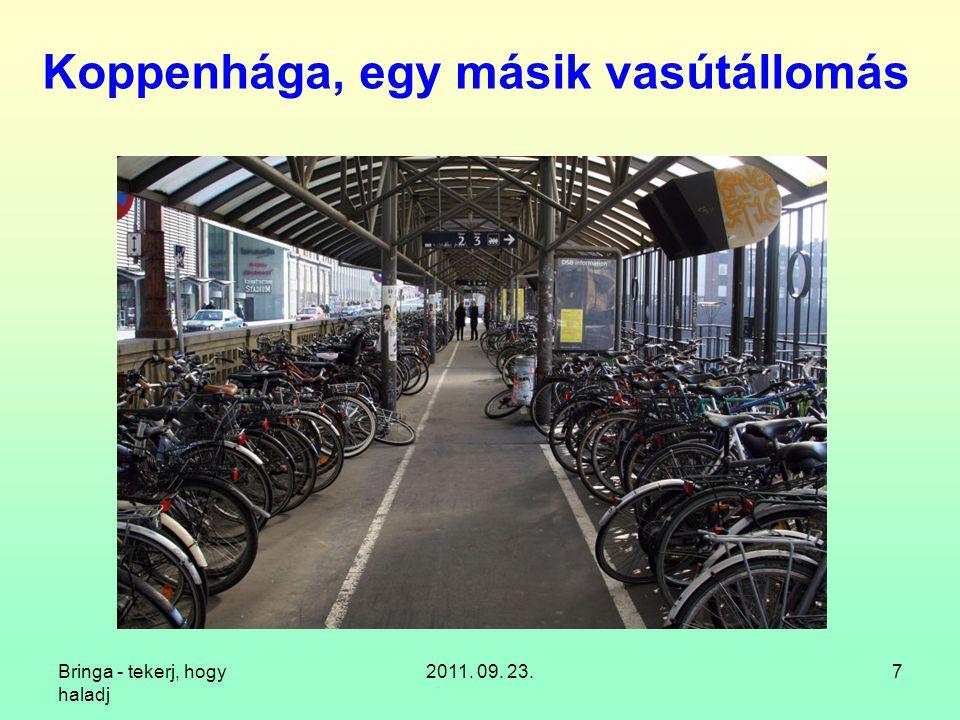 """Bringa - tekerj, hogy haladj 2011. 09. 23.28 """"Kerékpártároló , PTE TTK"""