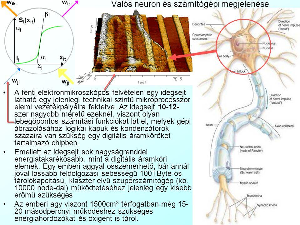 Az előadás tartalma Mesterséges idegsejt hálózatok, mint eloszlásfüggetlen becslési rendszerek alapfogalmai Mesterséges neurális hálózatok bevezető A
