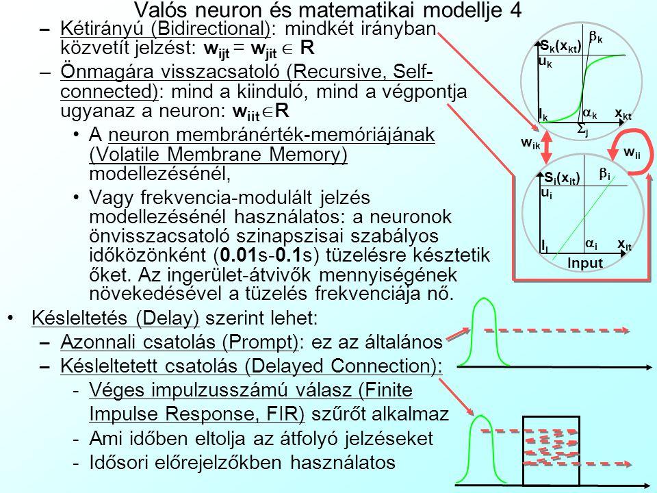 Valós neuron és matematikai modellje 3 A w ikt szinapszis ok/ kapcsolat ok/ csatolások (Synapse, Connection) tulajdonságai mesterséges neurális hálóza