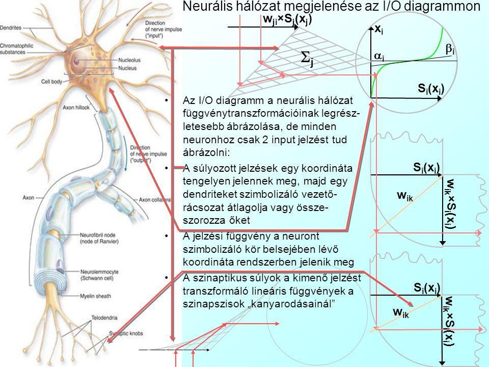 Neurális hálózat megjelenése Topológiai diagrammon A neurális hálózat topológiáját topológiai diagrammon (Topology Diagram) ábrázolhatjuk, ami egy irá