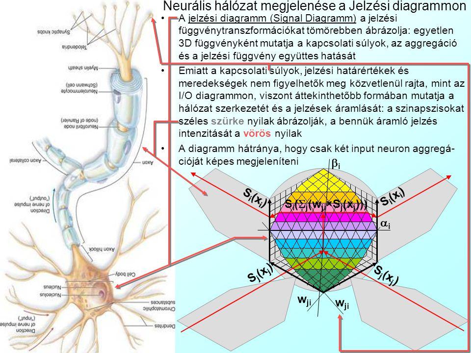 Neurális hálózat megjelenése az I/O diagrammon jj xixi S i (x i ) w ik ii ii w ji ×S j (x j ) w ik ×S i (x i ) S i (x i ) Az I/O diagramm a neur