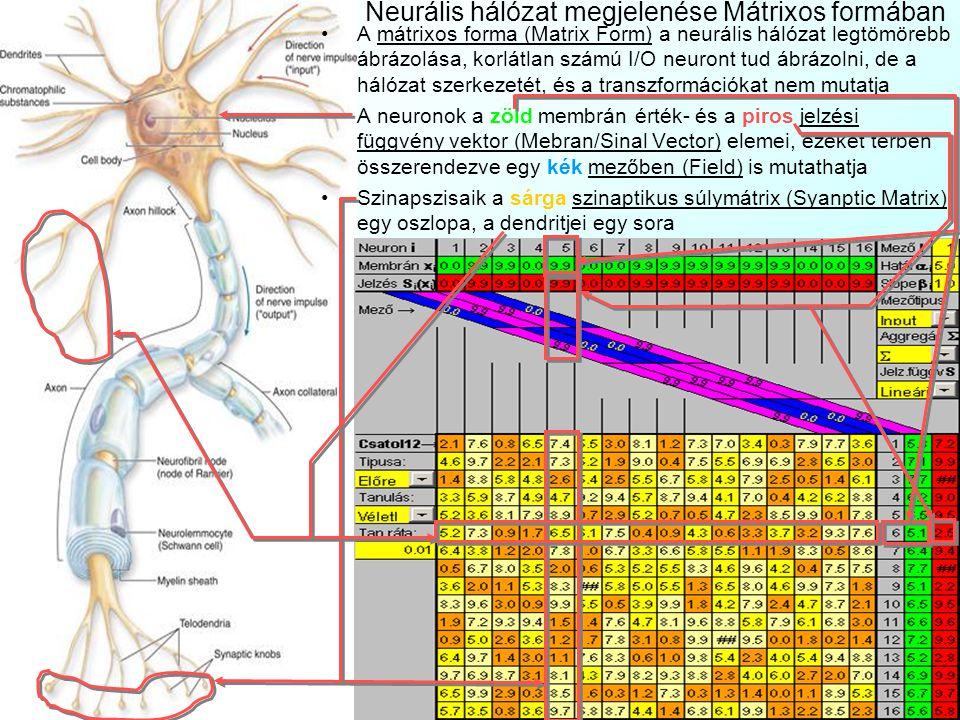 S i (x i ) S j (x j ) ii ii w ji S i (  j (w ji ×S j (x j ))) Neurális hálózat megjelenése a Jelzési diagrammon A jelzési diagramm (Signal Diagra