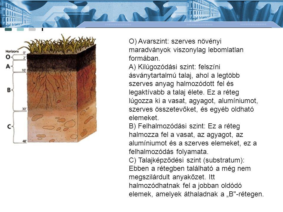 O) Avarszint: szerves növényi maradványok viszonylag lebomlatlan formában. A) Kilúgozódási szint: felszíni ásványtartalmú talaj, ahol a legtöbb szerve