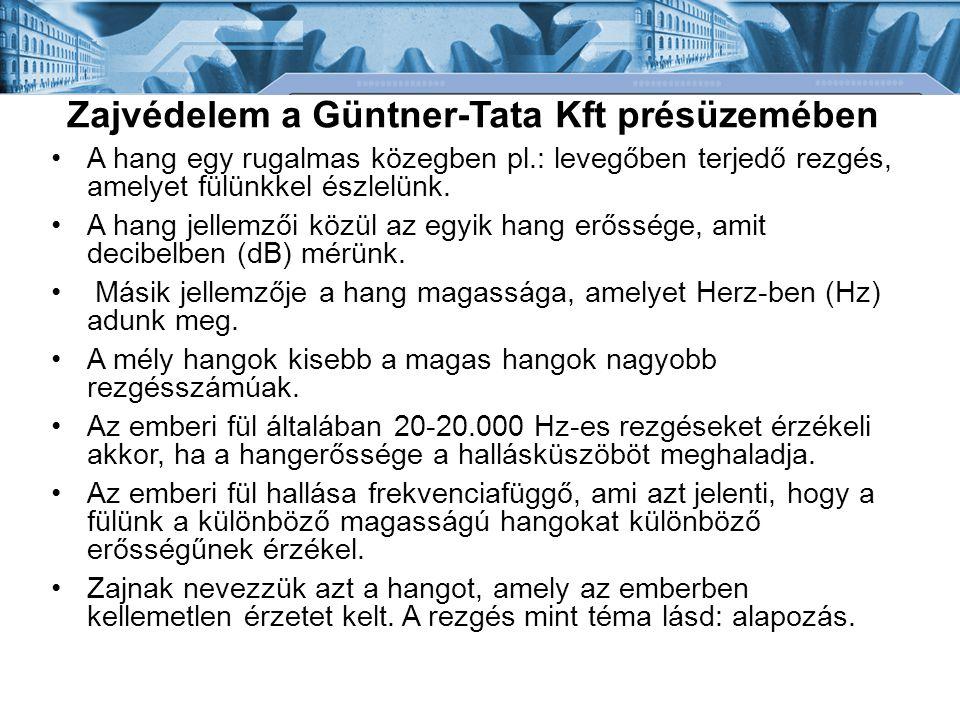Zajvédelem a Güntner-Tata Kft présüzemében A hang egy rugalmas közegben pl.: levegőben terjedő rezgés, amelyet fülünkkel észlelünk. A hang jellemzői k