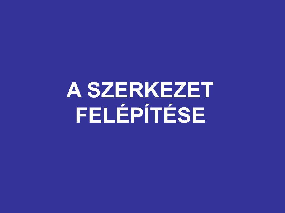 A SZERKEZET FELÉPÍTÉSE