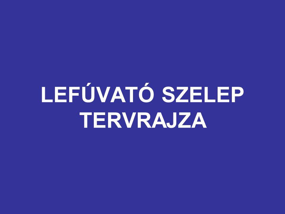 LEFÚVATÓ SZELEP TERVRAJZA