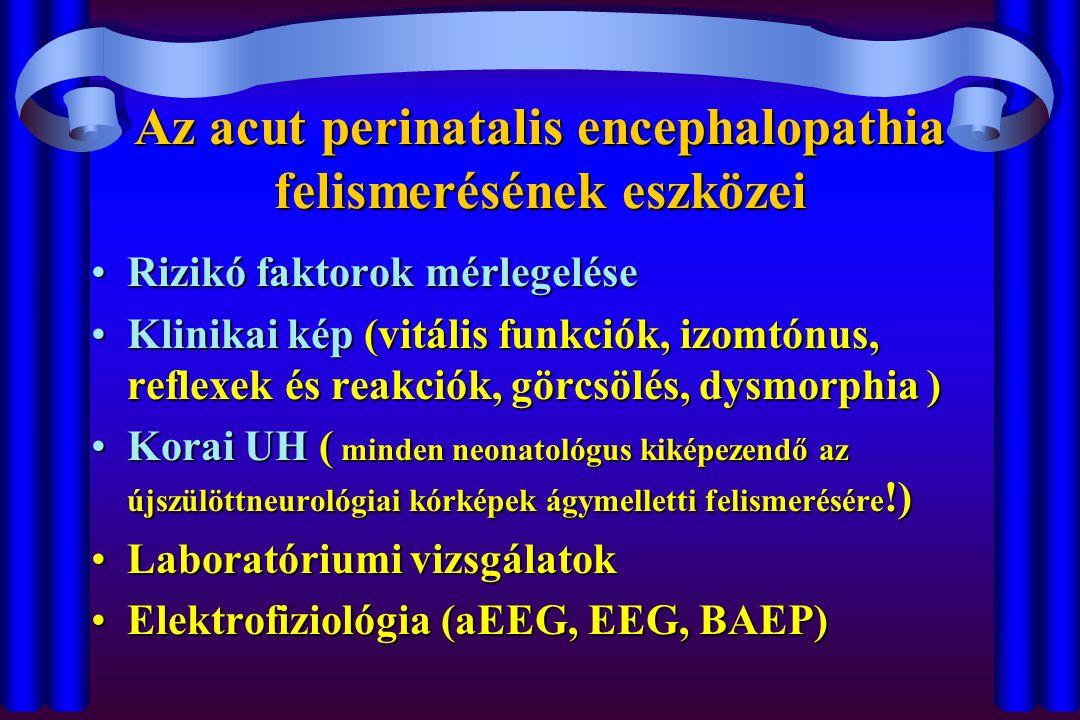 Az acut perinatalis encephalopathia felismerésének eszközei Rizikó faktorok mérlegeléseRizikó faktorok mérlegelése Klinikai kép (vitális funkciók, izo