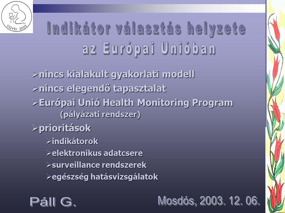  nincs kialakult gyakorlati modell  nincs elegendő tapasztalat  Európai Unió Health Monitoring Program (pályázati rendszer)  prioritások  indikátorok  elektronikus adatcsere  surveillance rendszerek  egészség hatásvizsgálatok
