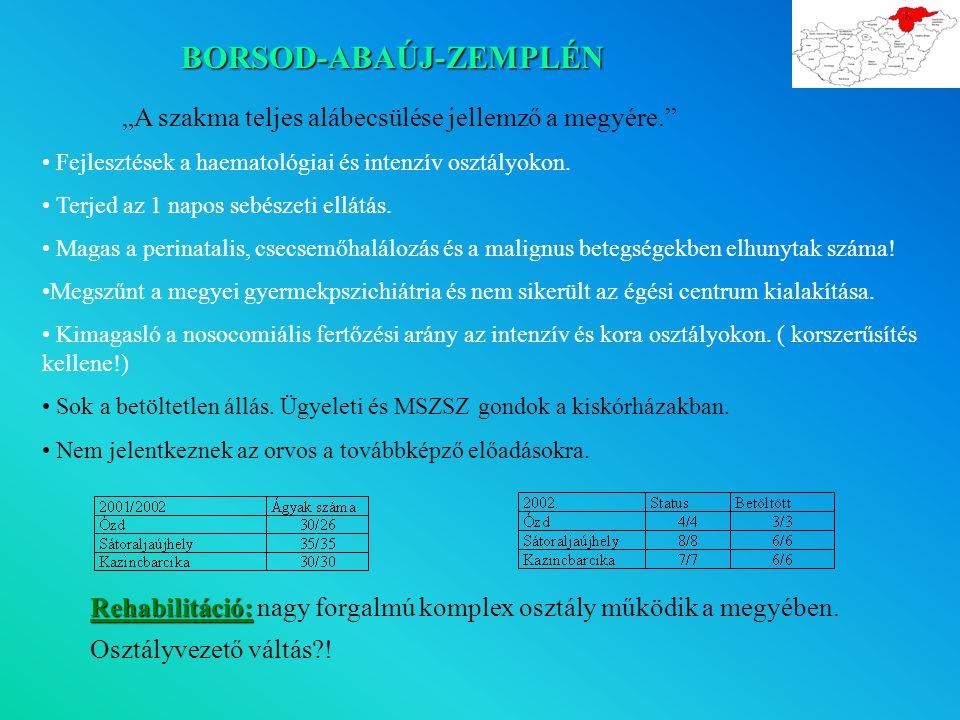 """BORSOD-ABAÚJ-ZEMPLÉN """"A szakma teljes alábecsülése jellemző a megyére. Fejlesztések a haematológiai és intenzív osztályokon."""