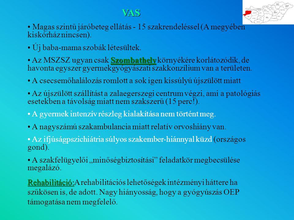 VAS Magas szintű járóbeteg ellátás - 15 szakrendeléssel (A megyében kiskórház nincsen).