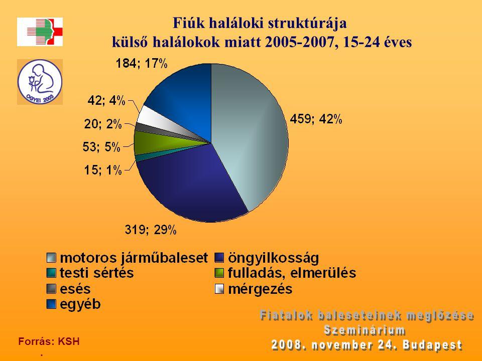 Fiúk haláloki struktúrája külső halálokok miatt 2005-2007, 15-24 éves. Forrás: KSH