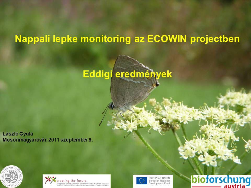 Nappali lepke monitoring az ECOWIN projectben Eddigi eredmények László Gyula Mosonmagyaróvár, 2011 szeptember 8.