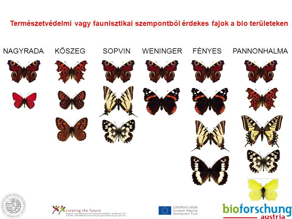 Természetvédelmi vagy faunisztikai szempontból érdekes fajok a bio területeken NAGYRADAKŐSZEGSOPVINWENINGERFÉNYESPANNONHALMA
