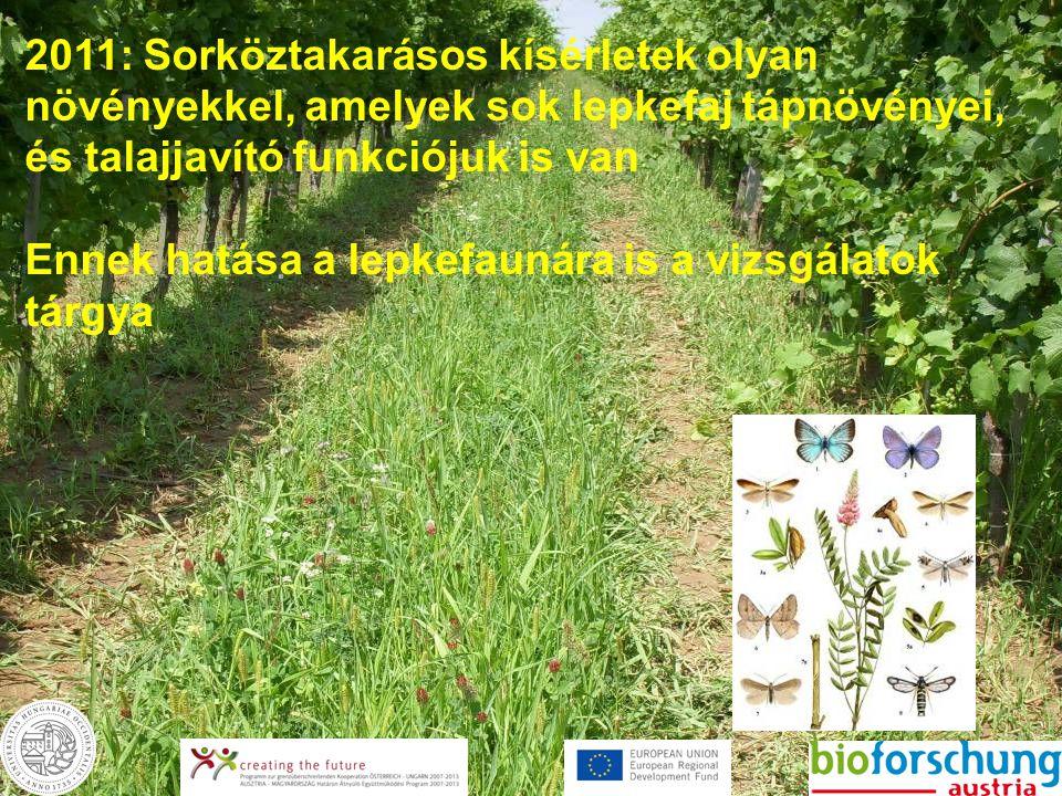 2011: Sorköztakarásos kísérletek olyan növényekkel, amelyek sok lepkefaj tápnövényei, és talajjavító funkciójuk is van Ennek hatása a lepkefaunára is a vizsgálatok tárgya