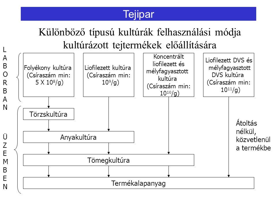 Különböző típusú kultúrák felhasználási módja kultúrázott tejtermékek előállítására Folyékony kultúra (Csíraszám min: 5 X 10 8 /g) Liofilezett kultúra (Csíraszám min: 10 9 /g) Koncentrált liofilezett és mélyfagyasztott kultúra (Csíraszám min: 10 10 /g) Liofilezett DVS és mélyfagyasztott DVS kultúra (Csíraszám min: 10 11 /g) Törzskultúra Anyakultúra Tömegkultúra Termékalapanyag Átoltás nélkül, közvetlenül a termékbe LABORBANLABORBAN ÜZEMBENÜZEMBEN Tejipar
