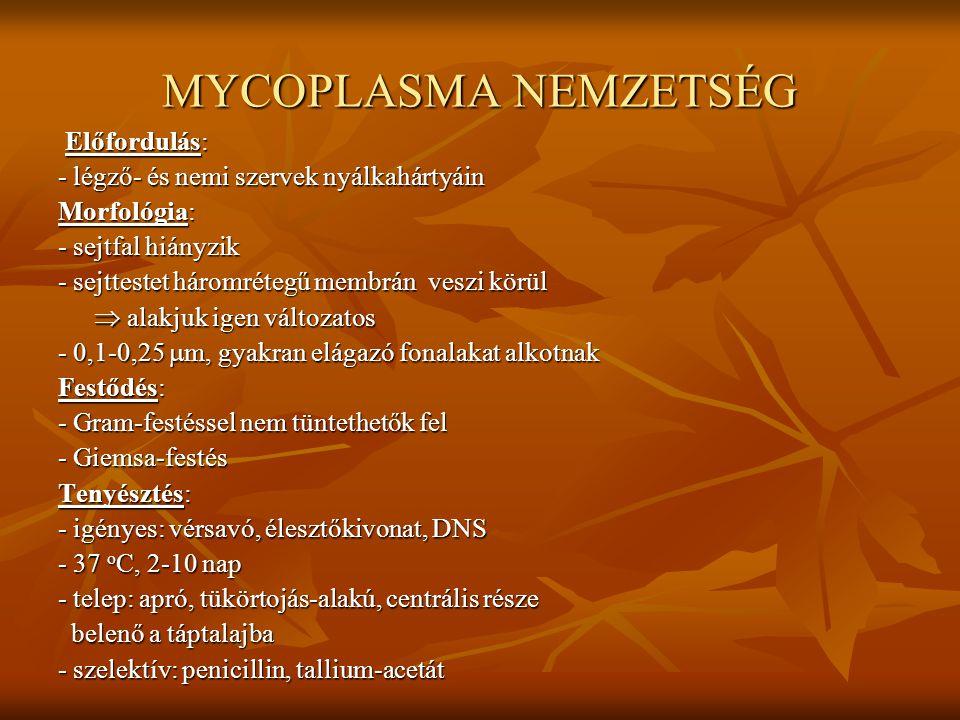 MYCOPLASMA NEMZETSÉG Előfordulás: Előfordulás: - légző- és nemi szervek nyálkahártyáin Morfológia: - sejtfal hiányzik - sejttestet háromrétegű membrán