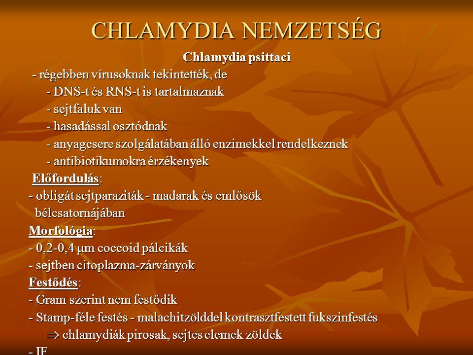 CHLAMYDIA NEMZETSÉG Chlamydia psittaci - régebben vírusoknak tekintették, de - régebben vírusoknak tekintették, de - DNS-t és RNS-t is tartalmaznak -