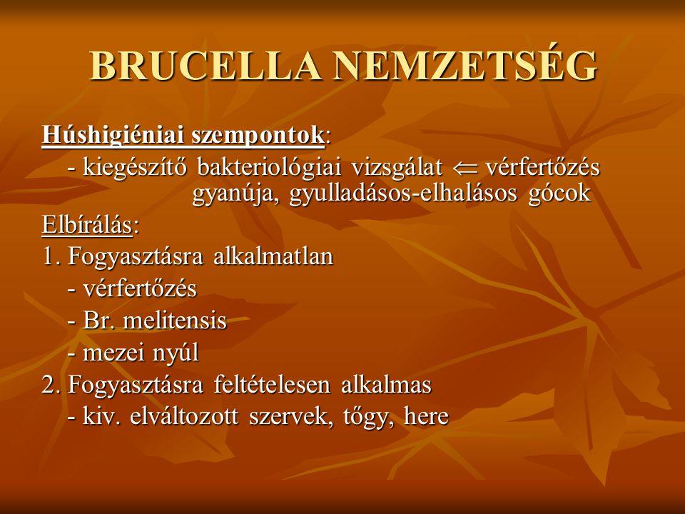 BRUCELLA NEMZETSÉG Tejhigiéniai szempontok: - nem vemhes méh esetében a tőgy és a tőgy feletti nyirokcsomókban vannak - tejjel ürül, de érzékszervi elváltozást nem okoz - szárazonálláskor feldúsul - tejben 8-10 napig túlél  fertőzési forrás lehet - savanyodáskor 1-2 nap alatt elpusztul Elbírálás: - beteg és betegségre gyanús állat teje fogyasztásra és feldolgozásra alkalmatlan - fertőzött és fertőzésre gyanús állat teje hőkezelés után feldolgozható Közegészségügyi szempontok: - zoonózis (Br.