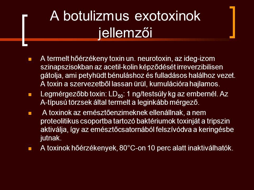A botulizmus exotoxinok jellemzői A termelt hőérzékeny toxin un. neurotoxin, az ideg-izom szinapszisokban az acetil-kolin képződését irreverzibilisen