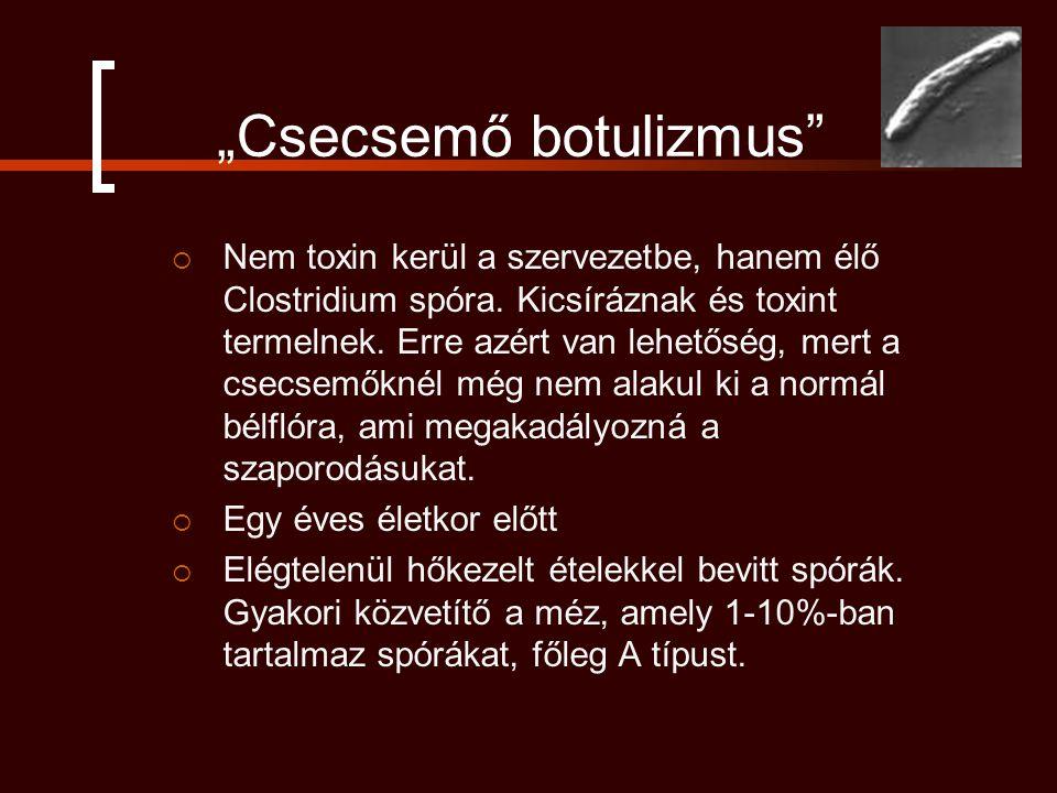 """""""Csecsemő botulizmus""""  Nem toxin kerül a szervezetbe, hanem élő Clostridium spóra. Kicsíráznak és toxint termelnek. Erre azért van lehetőség, mert a"""