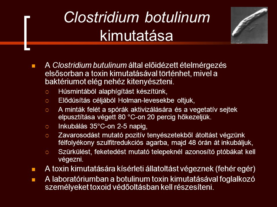 Clostridium botulinum kimutatása A Clostridium butulinum által előidézett ételmérgezés elsősorban a toxin kimutatásával történhet, mivel a baktériumot elég nehéz kitenyészteni.