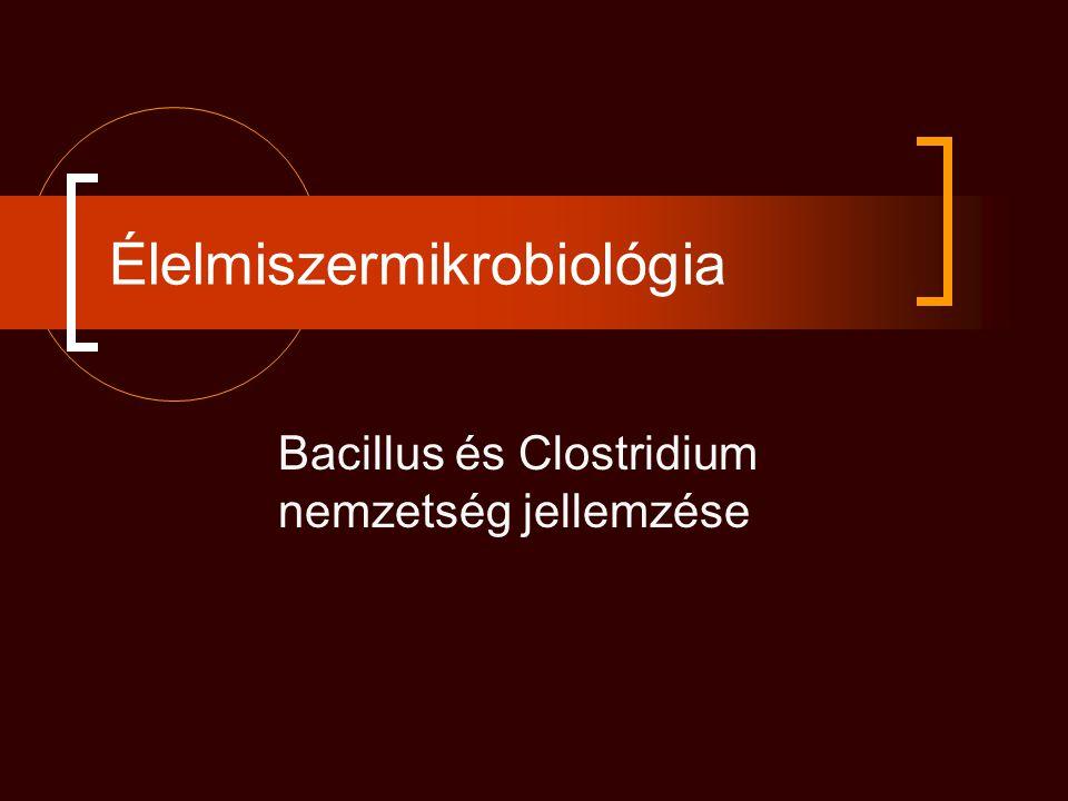 Bacillus cereus Biokémia: glükózbontás savtermelés közben gáztermelés nélkül kataláz+, mannitot nem bontja, lecitináz+, foszfolipáz+, nitrátredukció Voges-Proskauer+ Ételmérgező törzsek: hemolizin, enterotoxin Antigénszerkezet: sejtfal - típusspecifikus poliszacharid - Ascoli-féle termoprecipitációs próbában keresztreakció Ellenállóképesség: vegetatív baktérium ellenállóképessége közepes, a toxin 60 °C-on inaktiválódik spórák rendkívül ellenállóak