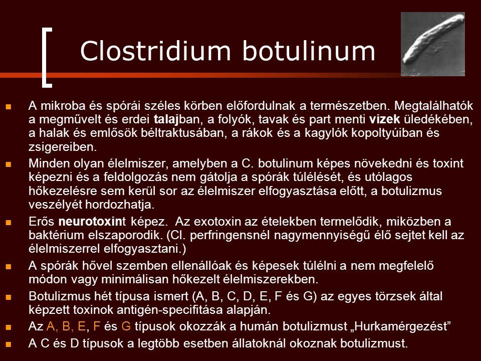 Clostridium botulinum A mikroba és spórái széles körben előfordulnak a természetben. Megtalálhatók a megművelt és erdei talajban, a folyók, tavak és p