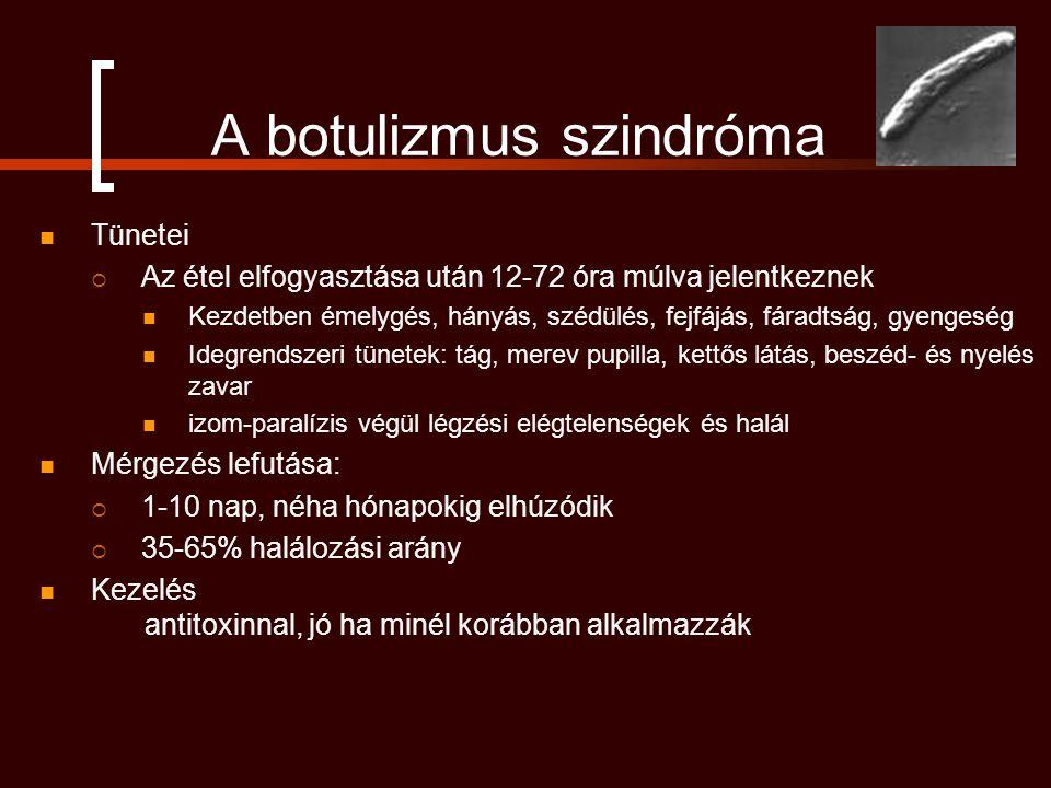 A botulizmus szindróma Tünetei  Az étel elfogyasztása után 12-72 óra múlva jelentkeznek Kezdetben émelygés, hányás, szédülés, fejfájás, fáradtság, gyengeség Idegrendszeri tünetek: tág, merev pupilla, kettős látás, beszéd- és nyelés zavar izom-paralízis végül légzési elégtelenségek és halál Mérgezés lefutása:  1-10 nap, néha hónapokig elhúzódik  35-65% halálozási arány Kezelés antitoxinnal, jó ha minél korábban alkalmazzák