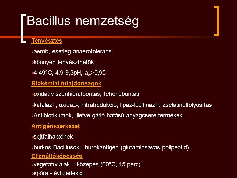 Bacillus nemzetség Tenyésztés  aerob, esetleg anaerotolerans  könnyen tenyészthetõk  4-49°C, 4,9-9,3pH, a w >0,95 Biokémiai tulajdonságok  oxidatí